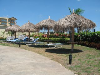 Aruba condo photo - Well maintained resort ground
