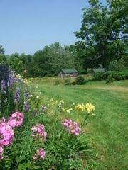 Baddeck house photo - Farmhouse Gardens and View of Property Fields
