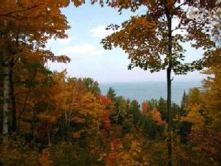 Cheboygan lodge photo - Fall Colors, They're Really fantastic!