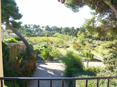 2 acre garden and vineyard