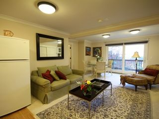 Berkeley apartment photo - Another view of living room with a comfortable sofa bed