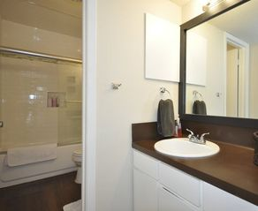 Austin house photo - Private Vanity in Master Bedroom!