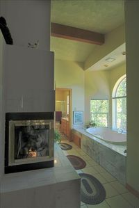 master bath jacuzzi tub & fireplace