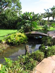 Kapaa house photo - Fish Pond