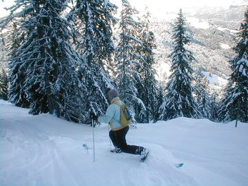 Ideal for back-country Telemark skiing