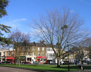 Winchmore Hill Green