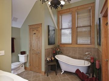 Master bath with tub and separate shower and two closets