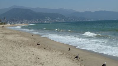Beach in front of Icon Vallarta