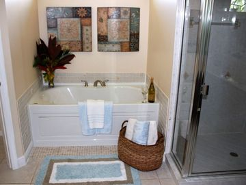 Spa Style Master Bath with Newly Remodeled Jacuzzi Tub