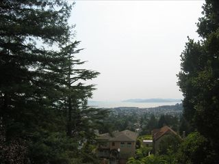 Berkeley apartment photo - View of SF Bay And charming houses below