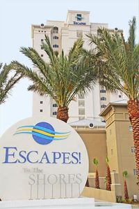 Welcome to Escapes!  To The Shores