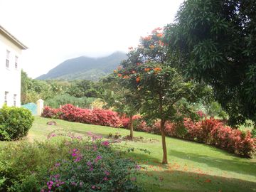 Nevis HOUSE Rental Picture
