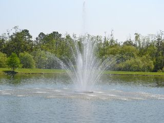 Villas at Seven Dwarfs Lane townhome photo - fountain on the lake next to our home (where you can also fish)