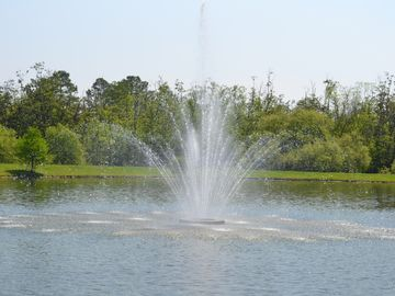 fountain on the lake next to our home (where you can also fish)