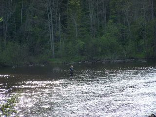Grayling lodge photo - Fly Fishing right outside the back-door!
