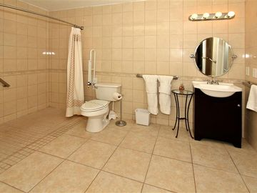 Master En-suite Bathroom One with flat access shower area.