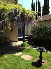 Santa Barbara house photo - Magical Wisteria in bloom. So many garden wonders to enjoy!