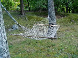 Montauk house photo - Yard hammock