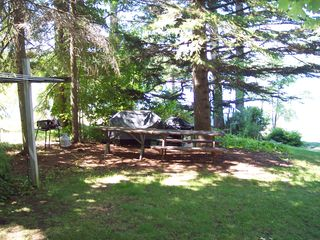 Gilford house photo - BBQ and Picnic area