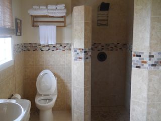 Long Island villa photo - spacious clean bathroom with shower