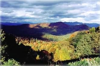 Local views of the Smokey Mountains