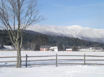 Your Winter view of meadow and ski slopes from the back deck