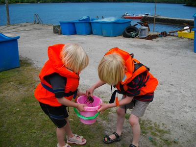 Helford house rental - Crabbing from the quay is fun