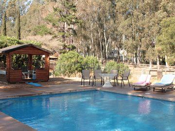 Buellton estate rental - In a private park setting sits 20x40 pool with pool house with fridge+ CD player