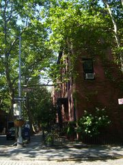 Brooklyn townhome photo - Our street