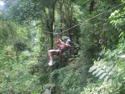 Zipline high in the canopy