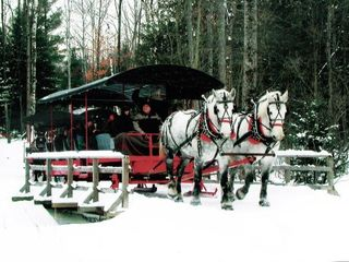 Hillman house photo - Horse-drawn sleigh rides and elk viewing at nearby ThunderBay Golf Resort.