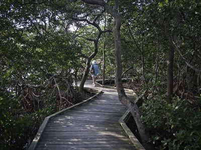 One of the boardwalks through the mangroves at Joan Durante Park. Walk or bike.