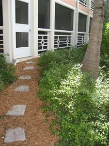 Back door from the Junior Suite  to the pool and beach -- Rental by Owner