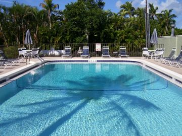 Heated pool with palm shadow
