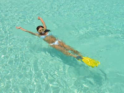 Guest staying at Villa Tropica enjoys discounted snorkeling and diving rates.