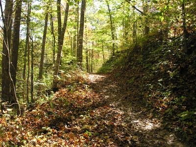 Enjoy the hiking and biking trails at nearby Tsali Recreation Center