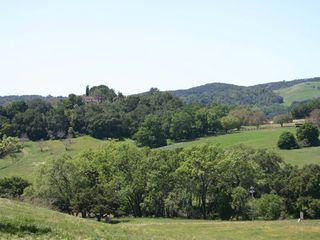 Paso Robles house photo - Another beautiful vista, minutes away off the 46 west