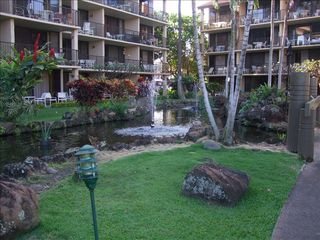 Kaanapali condo photo - Courtyard and Koi pond