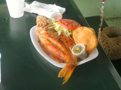 Red Snapper from Naguabo - Seaside village