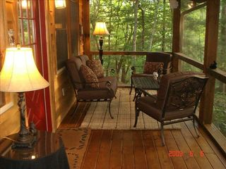 Clayton cabin photo - Enjoy the Screened Porch - day or night