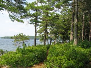 Path through the Blueberry Bushes - Alton house vacation rental photo