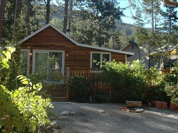 Idyllwild cabin rental - Cabin in the Mid summer !