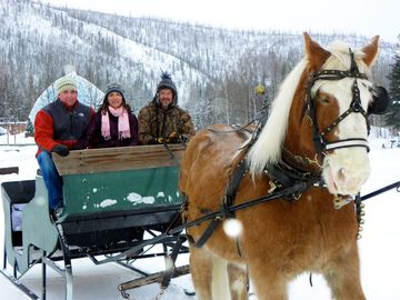 Take a romantic horse-drawn sleigh ride through the resort by Denise Ferree
