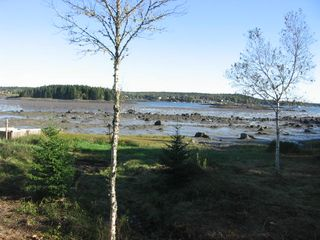 Addison cottage photo - Low tide as seen from deck-