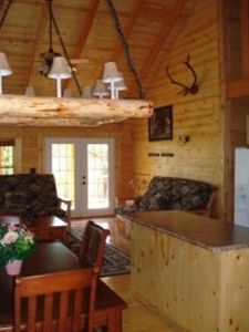 Ridgedale cabin rental - Charming, stout & rustic. Unique hand crafted log chandelier!