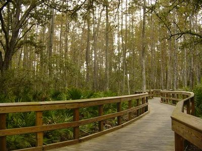 Take a stroll through Pelican's Audobon Nature Preserve