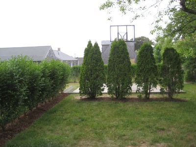 Basketball court behind shrubs