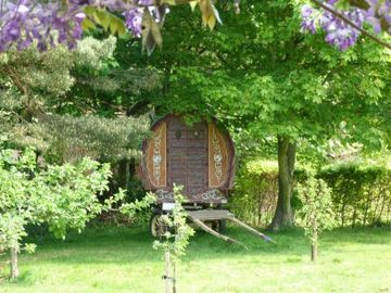 Bow top gypsy caravan nestled in the orchard