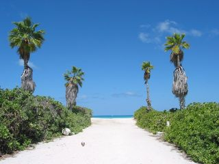 Providenciales - Provo cottage photo - Beach Access via Nightjar Rd, 2 minutes walk from Artemis Retreat