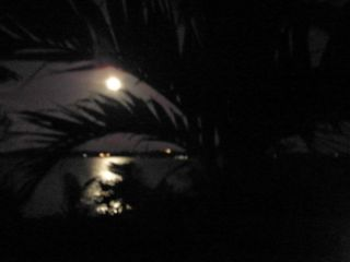 Lubbers Quarters Cay cottage photo - Moonlight on still water....an enchanting deck view